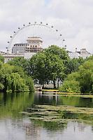 LONDRES-UK-25-05-2013. Vista del London Eye desde los jardines del Palacio de Buckingham, Londes. London Eye from Buckingham Palace gardens, London. Photo: VizzorImage