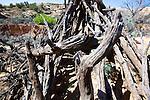 US, Southwest, Anazazi ruins