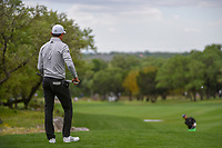 HaoTong Li (CHN) watches a chips shot from near the green on 12 during day 4 of the Valero Texas Open, at the TPC San Antonio Oaks Course, San Antonio, Texas, USA. 4/7/2019.<br /> Picture: Golffile | Ken Murray<br /> <br /> <br /> All photo usage must carry mandatory copyright credit (© Golffile | Ken Murray)