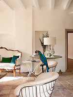 The peacock blue of the taxidermy parrots feathers is mirrored by a velvet scatter cushion on the sofa