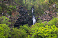Petit Jean State Park, Arkansas:<br /> Cedar Creek falls surrounded by the spring hardwood forest