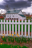 Daffodils line a garden along a white picket fence at Heritage Park in Westerville, Ohio. The centerpiece of the park is Everal Barn, a restored working barn now part of the Westerville park system. Photo Copyright Gary Gardiner.