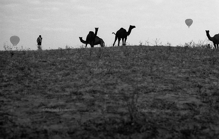 11.2010 Pushkar (Rajasthan)<br /> <br /> Camel driver looking ballooning flying .<br /> <br /> Chameliers regardant les montgolfières en train de voler.