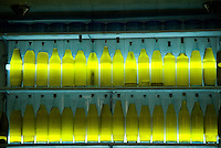 Rows of olive oil on display in front of lights in a shop in Fez, Morocco.