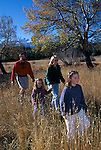 A family of four hiking through a fall meadow in Rocky Mtn Nat'l Park, CO