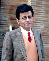 Casey Kasem By Jonathan Green <br />