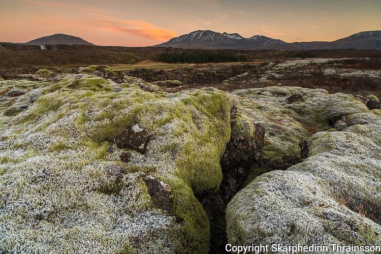 Autumn in Þingvellir national park