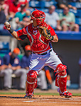 5 March 2013: Washington Nationals catcher Wilson Ramos in action during a Spring Training game against the Houston Astros at Space Coast Stadium in Viera, Florida. The Nationals defeated the Astros 7-1 in Grapefruit League play. Mandatory Credit: Ed Wolfstein Photo *** RAW (NEF) Image File Available ***