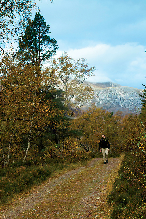 Walking through Coulin Forest near Loch Coulin, Ross & Cromarty, Northwest Highlands