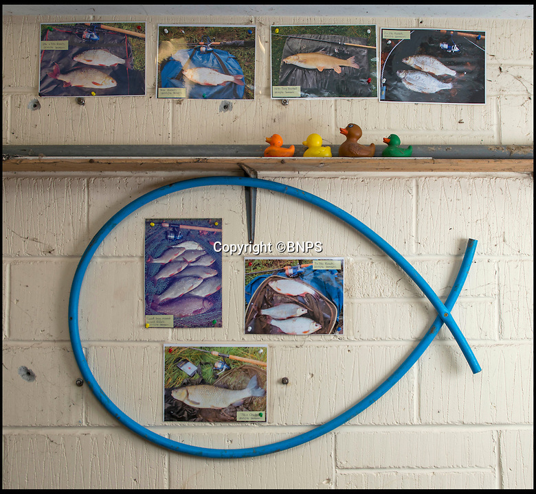 """BNPS.co.uk (01202 558833)<br /> Pic: TomWren/BNPS<br /> <br /> The wall where the catches have been displayed by the mystery fisherman.<br /> <br /> A mystery fishing """"genius"""" has sparked intrigue after pinning photos of his monster catches inside an angling club's riverbank lodge - in an enigma being dubbed 'Good Will Fishing'.<br /> <br /> The anonymous fisherman has systematically worked his way through a tough stretch of the River Avon and pulled in 19 once-in-a-lifetime catches in the last 12 months.<br /> <br /> And much like 1997 film Good Will Hunting, in which Matt Damon's genius character anonymously solves near-impossible mathematical equations while working as a janitor at a prestigious university, the angling Einstein showcases his brilliance in secret."""