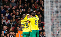 Celebrations after Josh Murphy of Norwich City scores to put his side in the lead 1 0 during the Carabao Cup match between Arsenal and Norwich City at the Emirates Stadium, London, England on 24 October 2017. Photo by Carlton Myrie.