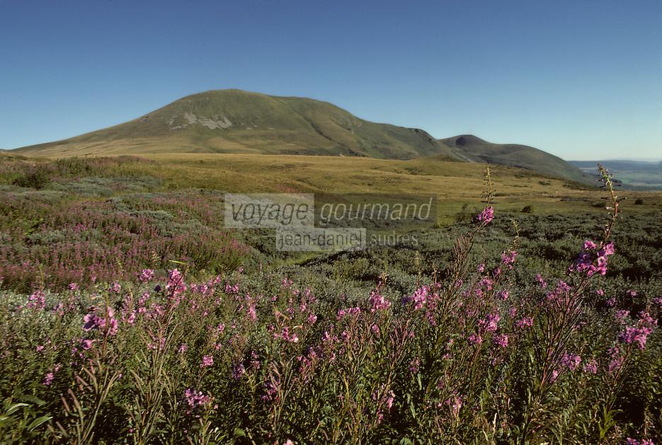 Europe/France/Auvergne/63/Puy-de-Dôme/Parc Naturel Régional des Volcans/Massif des Monts Dores: Le col de la Croix Saint Robert (1426 mètres)