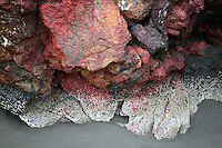 Close up of colorful seastack rocks and low tide at Cape Sebastion. Oregon