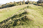 Sidbury Camp or Sidbury Hill Iron Age hill fort, Haxton Down, near Everleigh, Wiltshire, England, UK