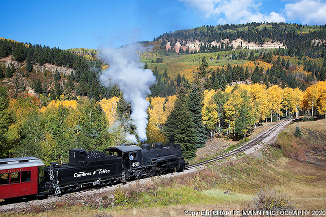 Visitors from all over the country and from overseas come to see and ride the Cumbres & Toltec Narrow Gauge Steam Railroad in Chama, New Mexico. Engine number 489 hals the train through an aspen glade on a mid September run up the mountain.