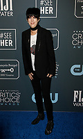 SANTA MONICA, CA - JANUARY 13: Dianne Warren attends the 24th annual Critics' Choice Awards at Barker Hangar on January 12, 2020 in Santa Monica, California. <br /> CAP/MPI/IS/CSH<br /> ©CSHIS/MPI/Capital Pictures