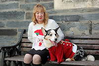 Pictured: Christine Newman with her Cardigan Corgi dog<br /> Re: The town of Cardigan in west Wales will be temporarily renamed Jumper tomorrow (Thursday).