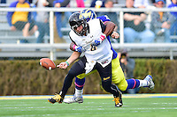 Newark, DE - OCT 29, 2016: Delaware Fightin Blue Hens linebacker Jasawn Thompson (29) sacks Towson Tigers quarterback Ellis Knudson (8) and causes a fumble during game between Towson and Delaware at Delaware Stadium Tubby Raymond Field in Newark, DE. (Photo by Phil Peters/Media Images International)