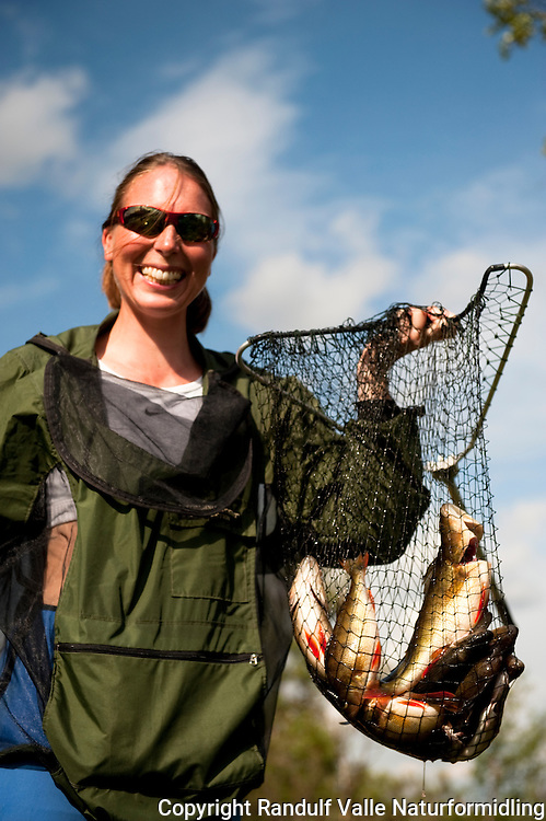 Dame med hov full av abbor. ---- Woman with net full of perch.
