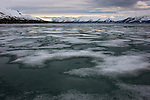 """Norway, Svalbard, a fjord covered in """"fast ice"""""""