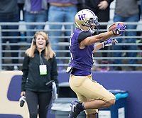KOMO's Elise Woodward seems giddy about the record-setting punt return touchdown by Dante Pettis.