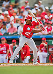 24 February 2019: Washington Nationals outfielder Chuck Taylor at bat during a Spring Training game against the St. Louis Cardinals at Roger Dean Stadium in Jupiter, Florida. The Nationals defeated the Cardinals 12-2 in Grapefruit League play. Mandatory Credit: Ed Wolfstein Photo *** RAW (NEF) Image File Available ***