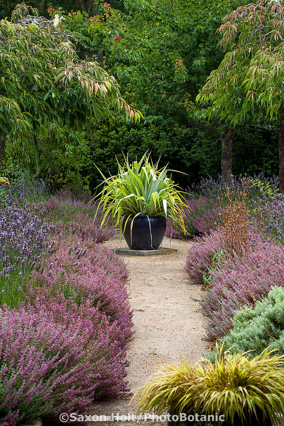 Containers (Astelia, Hakonechloa) along garden path with herb borders as focal points in garden room; Gary Ratway garden