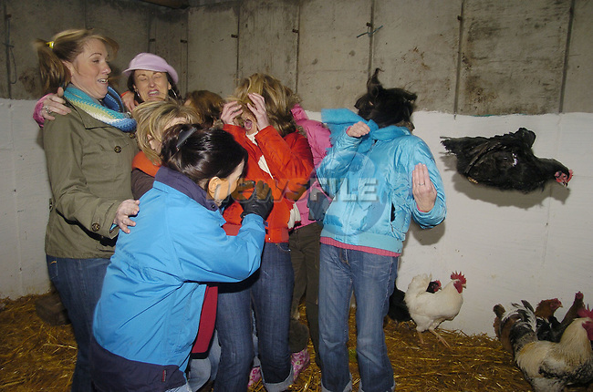 10th February, 2007. Organised hen parties (human ones) run by Deirdre Murtagh at her farm, Causey Farm, Kells, County Meath. 