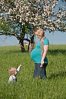A male toddler points to his pregnant mothers large belly while playing in a farm field near a blooming apple tree in spring.