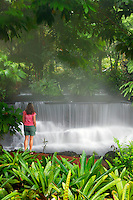 A visitor (mr) enjoys watching a stream flowing through Tabacon Hot Spring Resort and Spa, Costa Rica