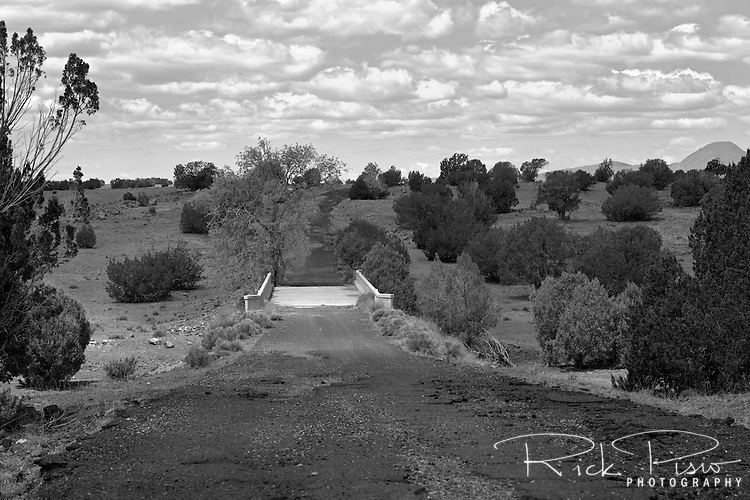 Partridge Creek Bridge along an abandoned section of Route 66 west of Ash Fork, Arizona. The Partridge Creek bridge is best known for the tree growing out of the roadway on the west side of the bridge.