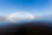 Fog Rainbow on Guana Lake