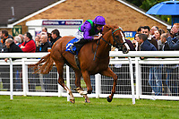 Winner of The Wilton Homes Novice Stakes, Tapisserie ridden by Ryan Moore and trained by William Haggas  during Evening Racing at Salisbury Racecourse on 11th June 2019
