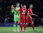 Liverpool's Simon Mignolet celebrates with Emre Can during the Premier League match at Vicarage Road Stadium, London. Picture date: May 1st, 2017. Pic credit should read: David Klein/Sportimage