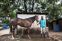 Jonah,a syce prepares Blossom Hill, a horse for washing and grooming after its morning canter. Ngong Racecourse, Nairobi, Kenya. March 13, 2013. Photo: Brendan Bannon