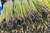 Asparagus officinalis is a spring vegetable