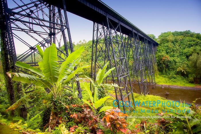 Highway bridge at Hakalau Bay, Hamakua Coast, Big Island, Hawaii, Pacific Ocean