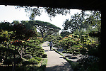 Trail in Japanese Garden in Hayward