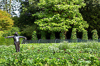 Bronze Sculpture of scarecrow modelled on Raymond Blanc in the vegetable garden at Le Manor Aux Quat' Saisons in Oxfordshire, UK