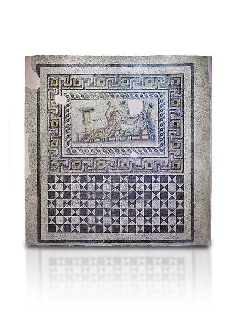 Roman mosaics. The Acratos & Eljprocvne Mosaic from The House of Maenad Zeugma.  2nd - 3rd century AD. Zeugma Mosaic Museum, Gaziantep, Turkey.  Against a white background.