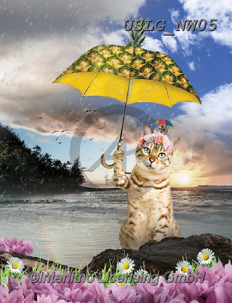 PAUL,REALISTIC ANIMALS, REALISTISCHE TIERE, ANIMALES REALISTICOS, paintings+++++NW_Fruit-Cat-D,USLGNW05,#a#, EVERYDAY ,funny photos