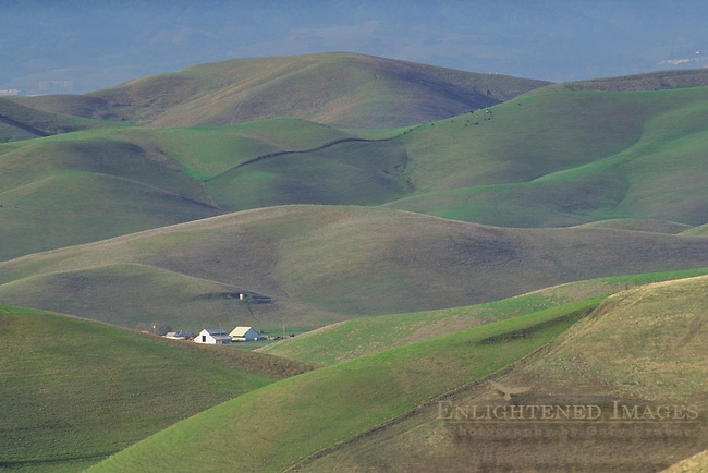 Cattle Ranch nestled in the Tassajara Hills in spring, Contra Costa County, CALIFORNIA