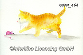 Kate, CUTE ANIMALS, LUSTIGE TIERE, ANIMALITOS DIVERTIDOS, paintings+++++ginger kitten.,GBKM464,#ac#, EVERYDAY