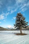 Winter in north Idaho
