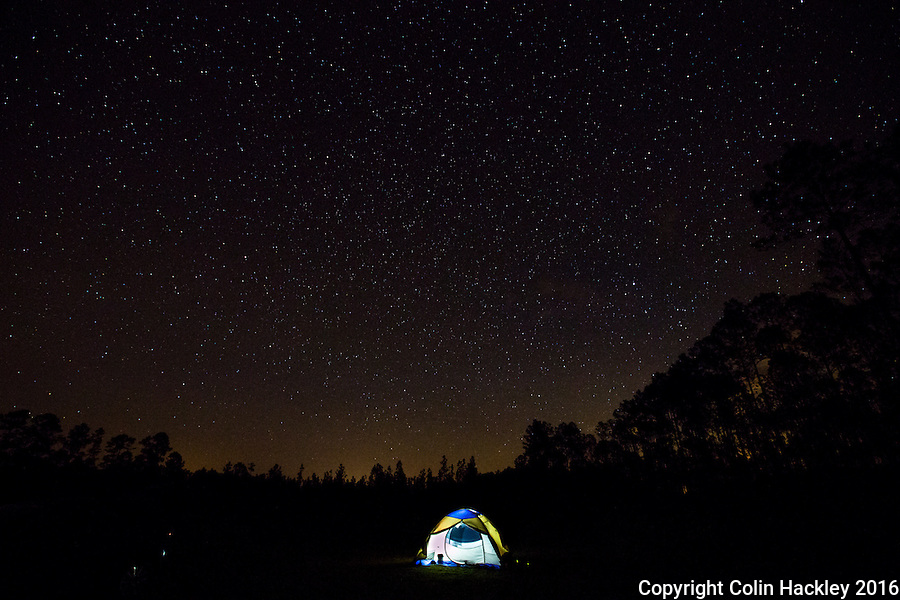 CLIO, FLA. 5/29/16-Outside the tent stars shine bright above the pines of the Apalachicola National Forest. Located in the heart of the panhandle the forest has some of the best star-gazing skies in Florida. <br /> <br /> COLIN HACKLEY PHOTO