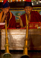 Buddhist Lama Monk from the Himalayan belt playing a unique horn during Losar celebrations