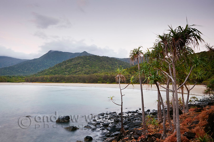 View of Myall Beach.  Cape Tribulation, Daintree National Park, Queensland, Australia