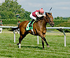 Just Sayin winning at Delware Park on 7/30/12