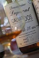 Europe/France/Normandie/Basse-Normandie/14/Calvados/Victot-Pontfol: à la distillerie des Calvados Dupont - Vieux Calvados de 38 ans d'age