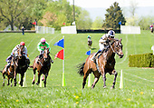 Matt McCarron, riding for Neil Morris once again, streaks to victory in the Paul Fout Maiden with Poplar Grove at Middleburg Spring.